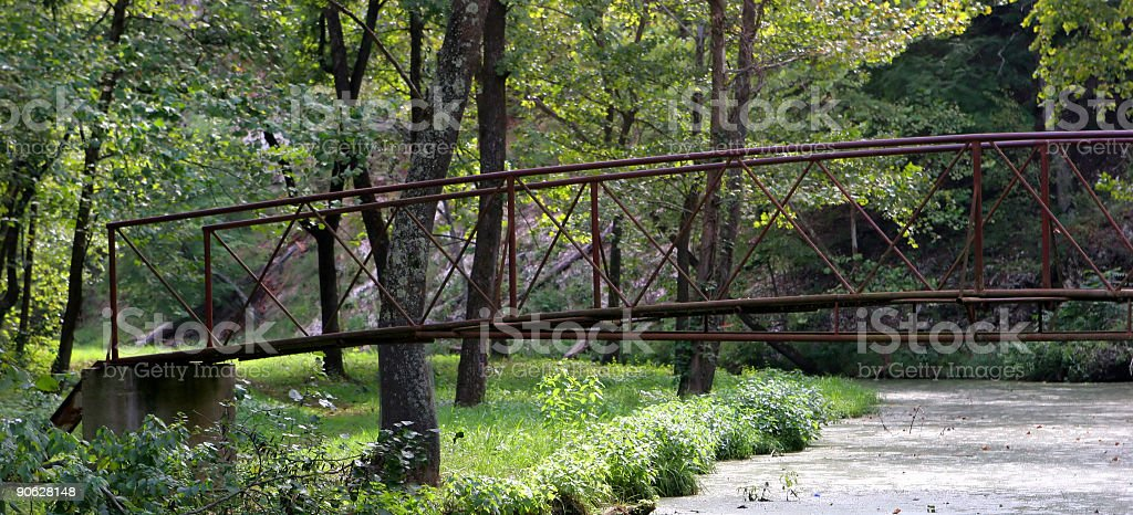 Bridge in Woods royalty-free stock photo