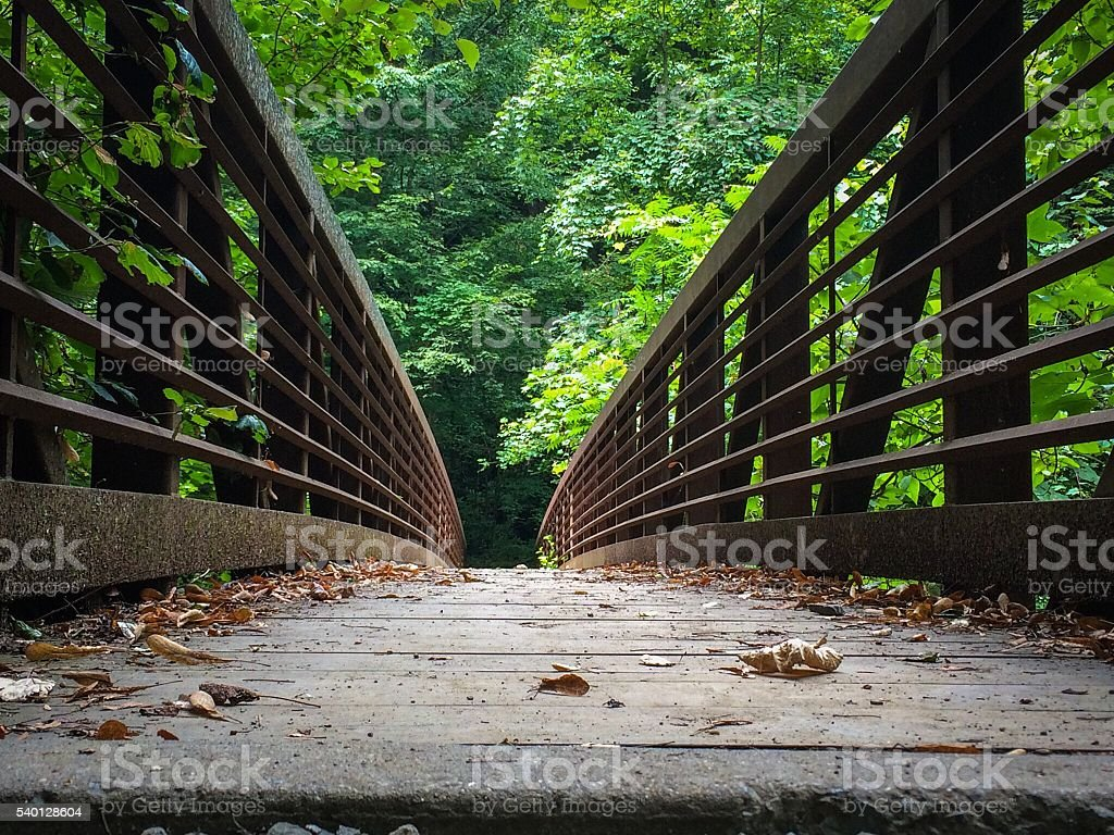 Bridge into forest in lower New River Gorge stock photo
