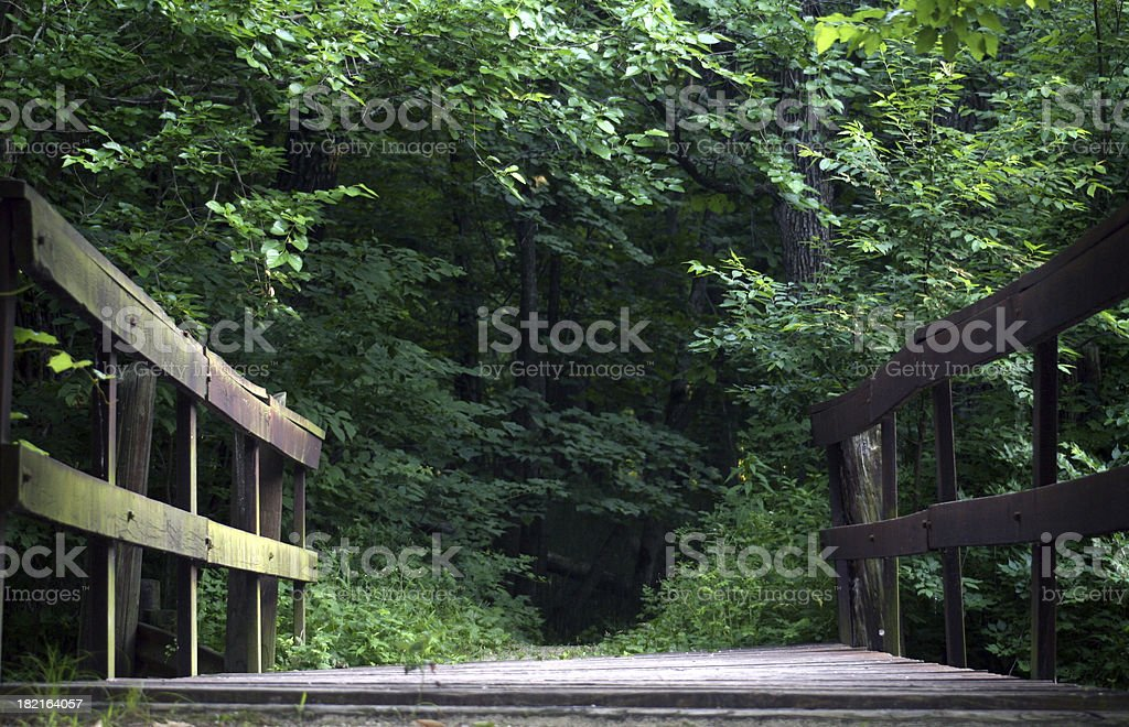 Bridge into the Forest royalty-free stock photo