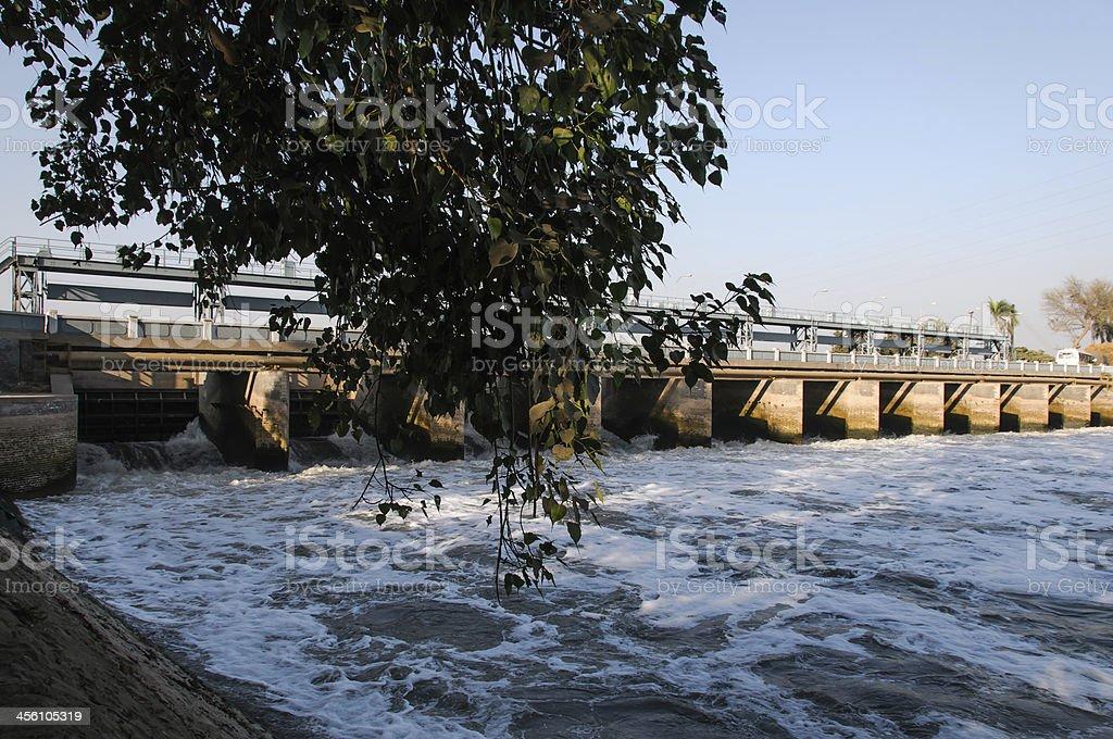bridge on a dam with tree stock photo