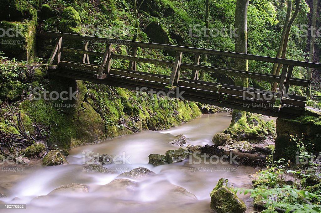 Bridge over Forest river royalty-free stock photo
