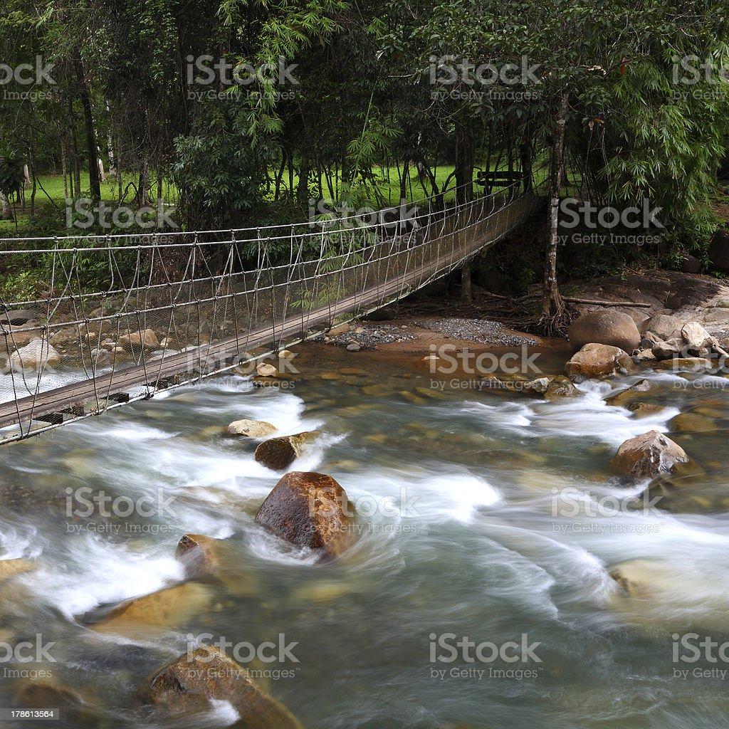 Bridge over forest stream royalty-free stock photo