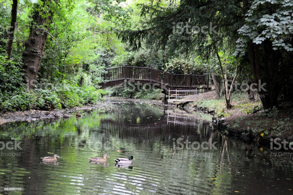 Bridge Over Lake stock photo