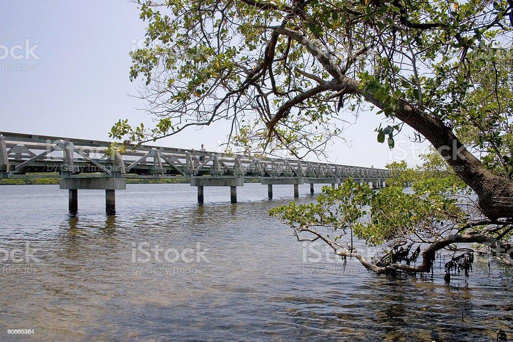 Bridge Over Lake With Tree stock photo