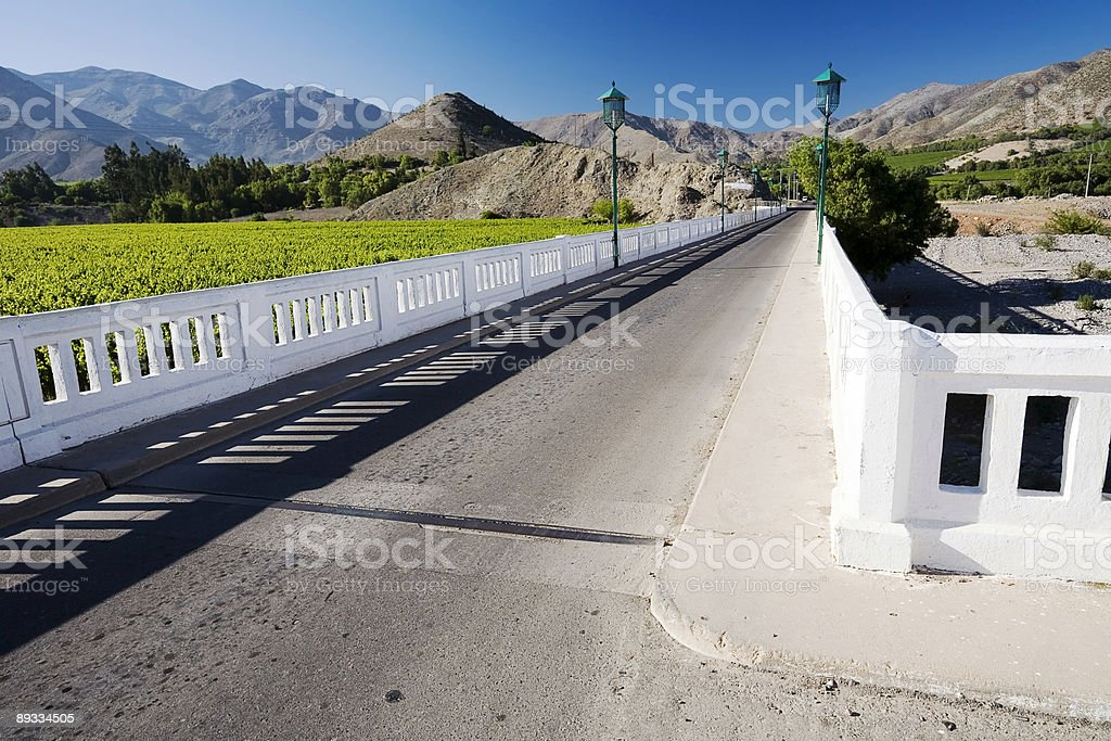 Bridge over the River Elqui, Chile royalty-free stock photo