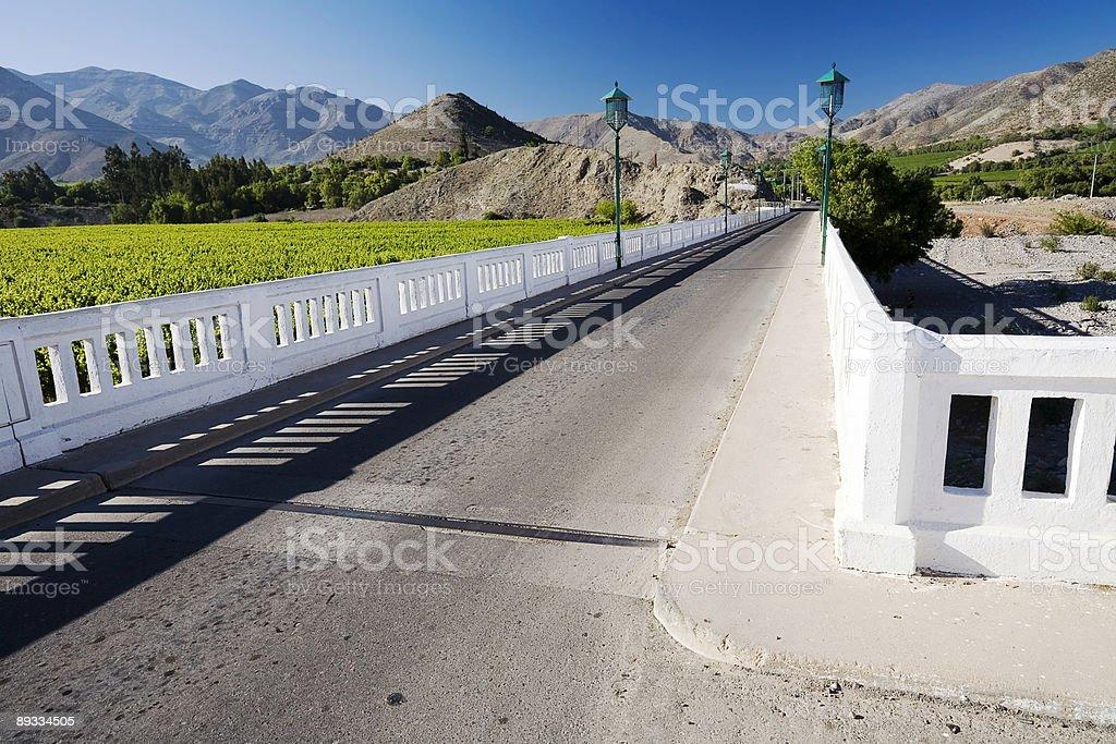 Bridge over the River Elqui, Chile stock photo
