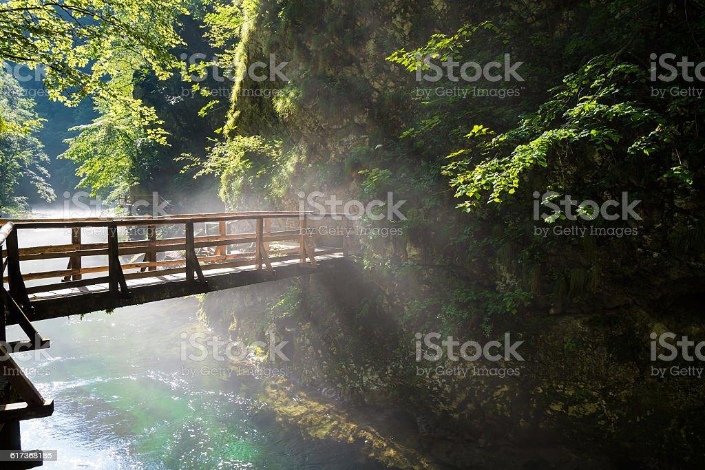 Bridge over Vintgar gorge and Radovna river near Bled, Slovenia stock photo