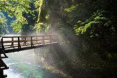 Bridge over Vintgar gorge and Radovna river near Bled, Slovenia
