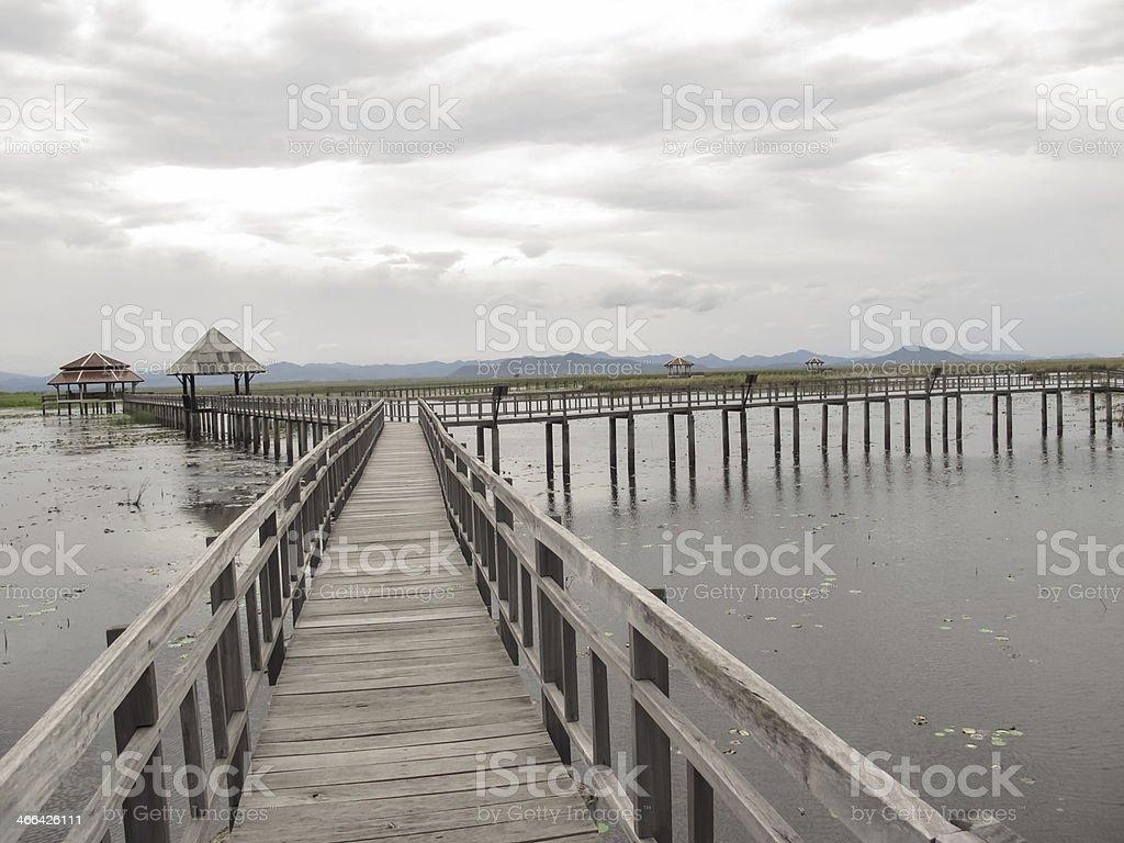 Most zbiór zdjęć royalty-free