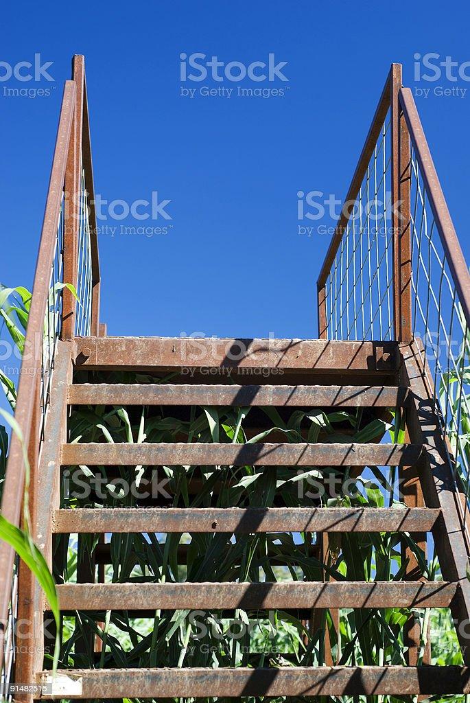 Bridge - Lizenzfreies stock-foto