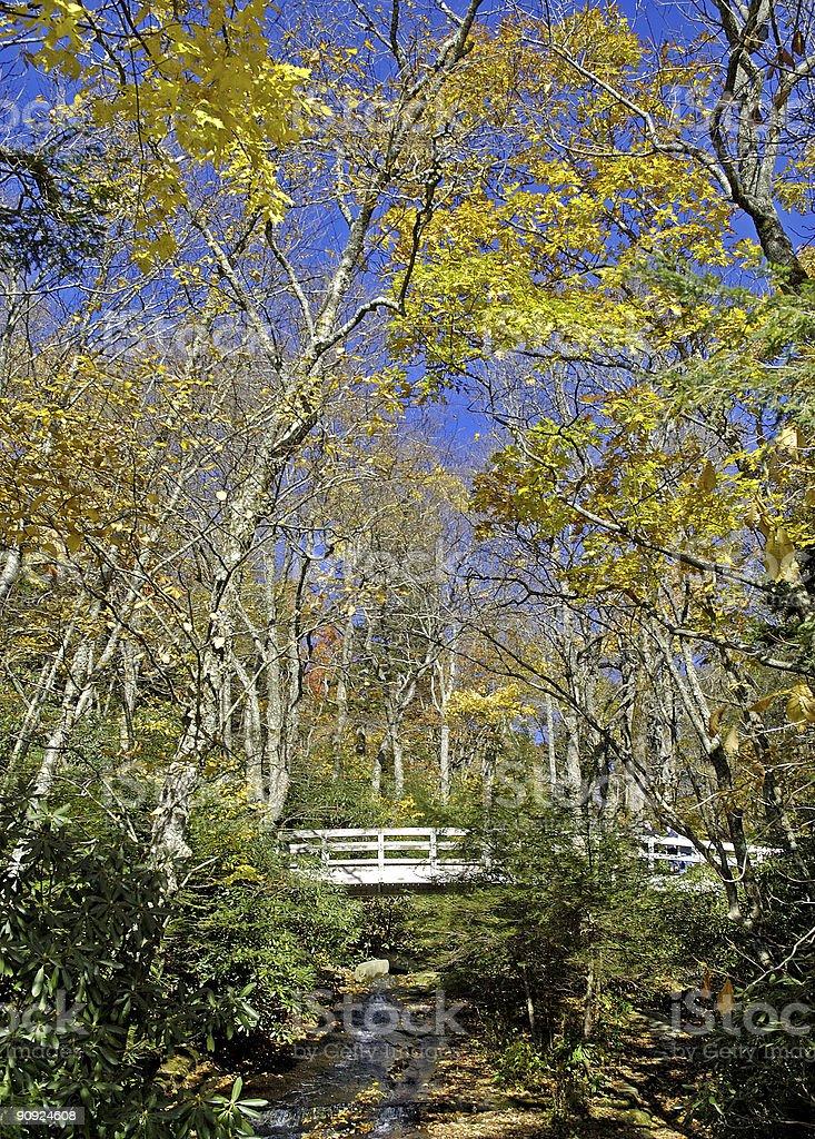 bridge through the autumn woods royalty-free stock photo