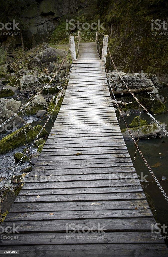 bridge to forest royalty-free stock photo