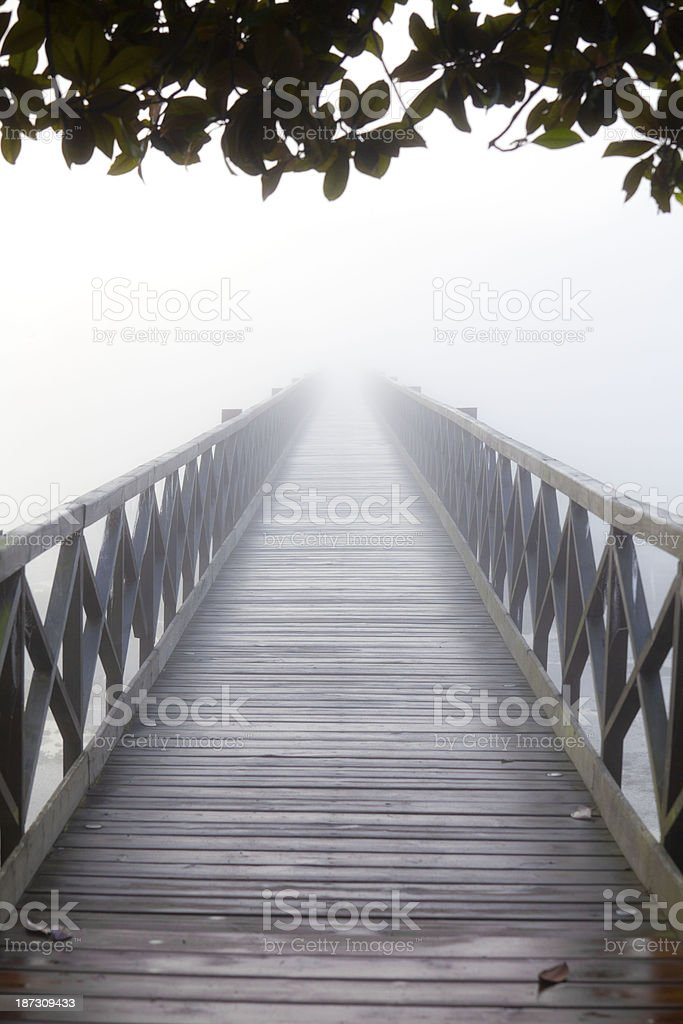 Bridge to nowhere under leaves royalty-free stock photo