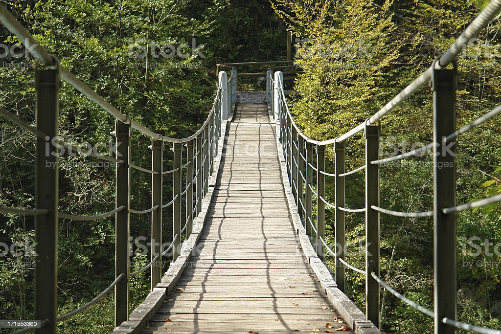 Bridge to the other side royalty-free stock photo