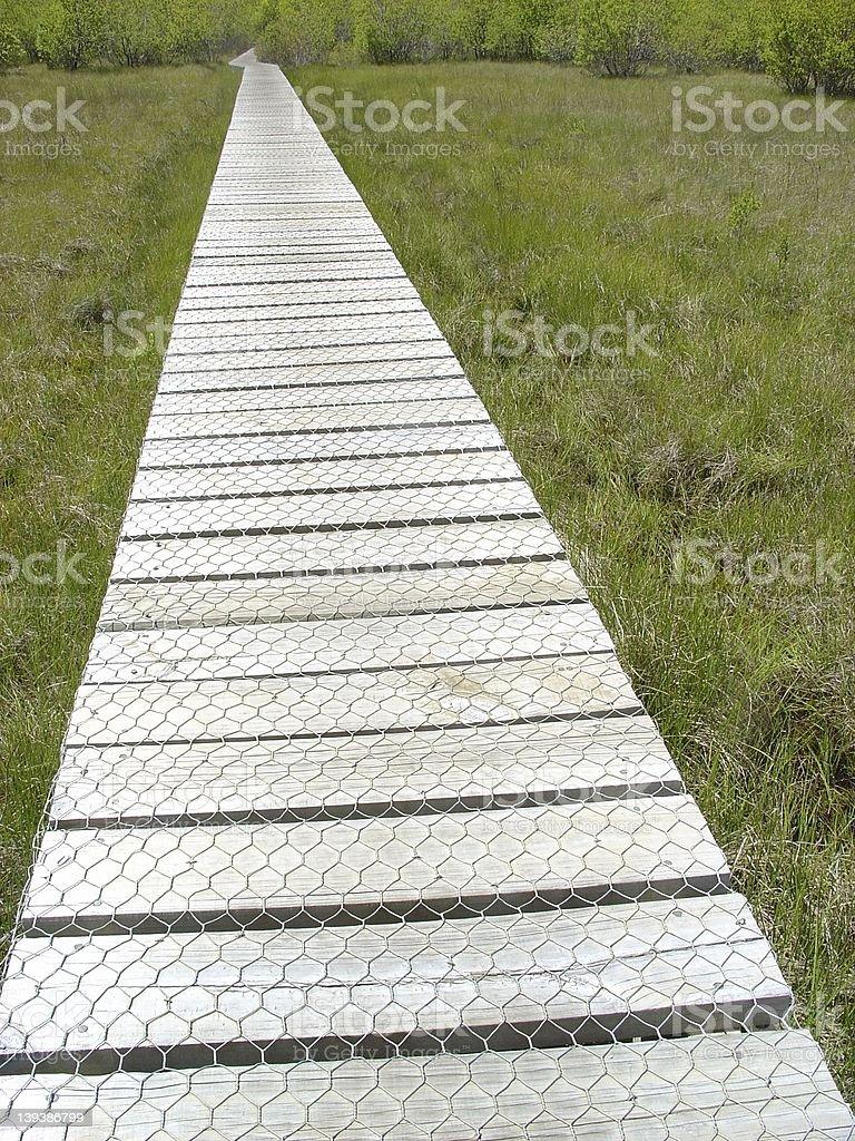 Bridge to tranquility royalty-free stock photo