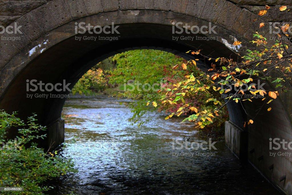 Bridge to water stock photo