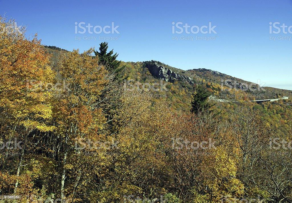 Bridge View In The Autumn royalty-free stock photo