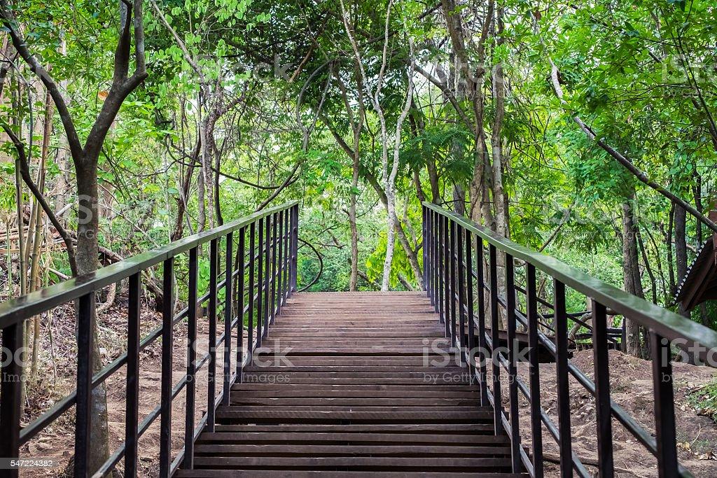 Bridge walkway wood and black steel in forest stock photo