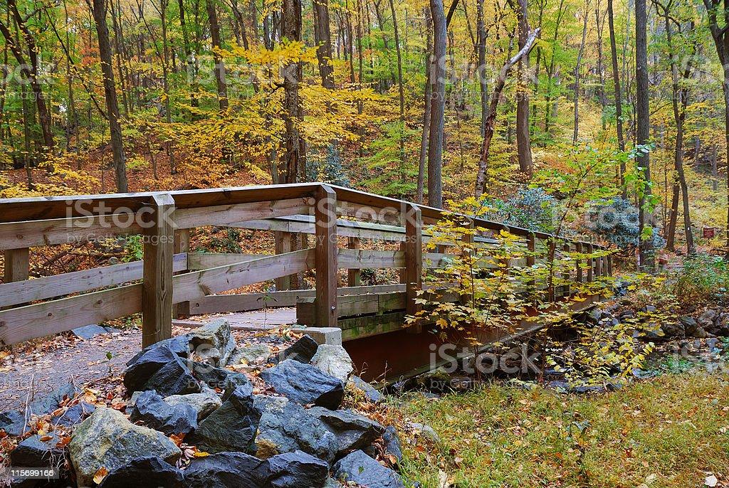 bridge woods in autumn stock photo