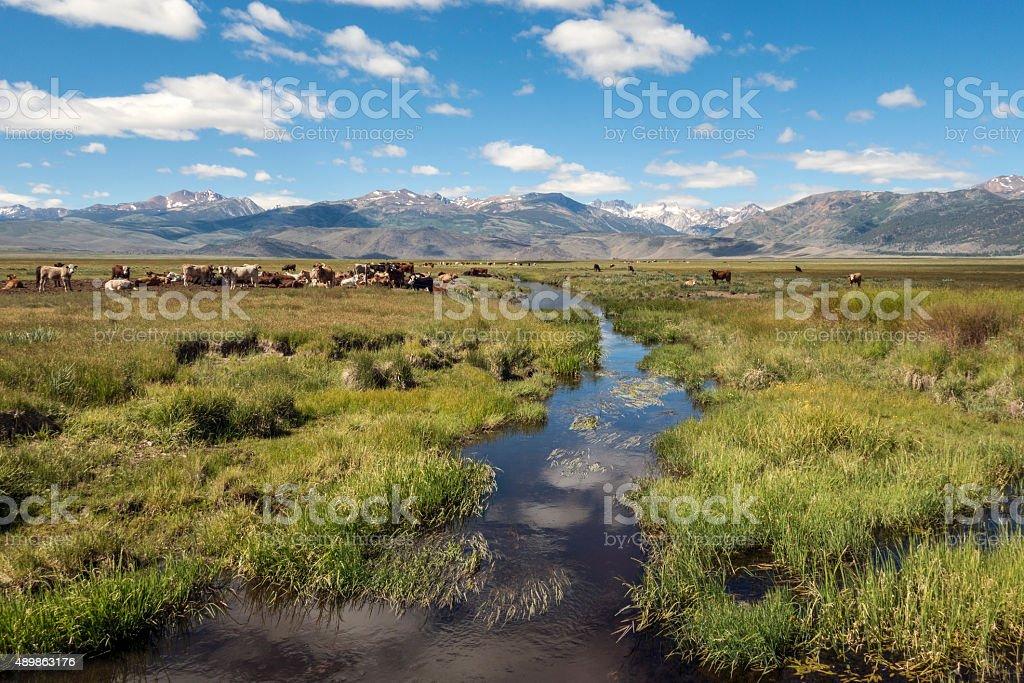 Bridgeport Valley beauty stock photo