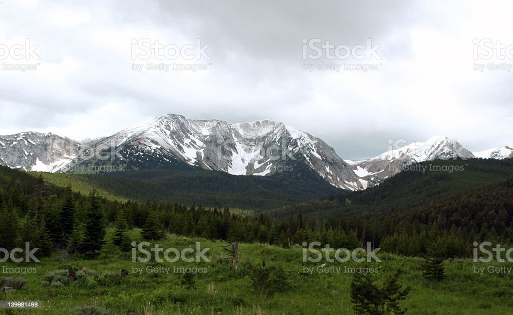 Bridgers in Sun and Shade royalty-free stock photo