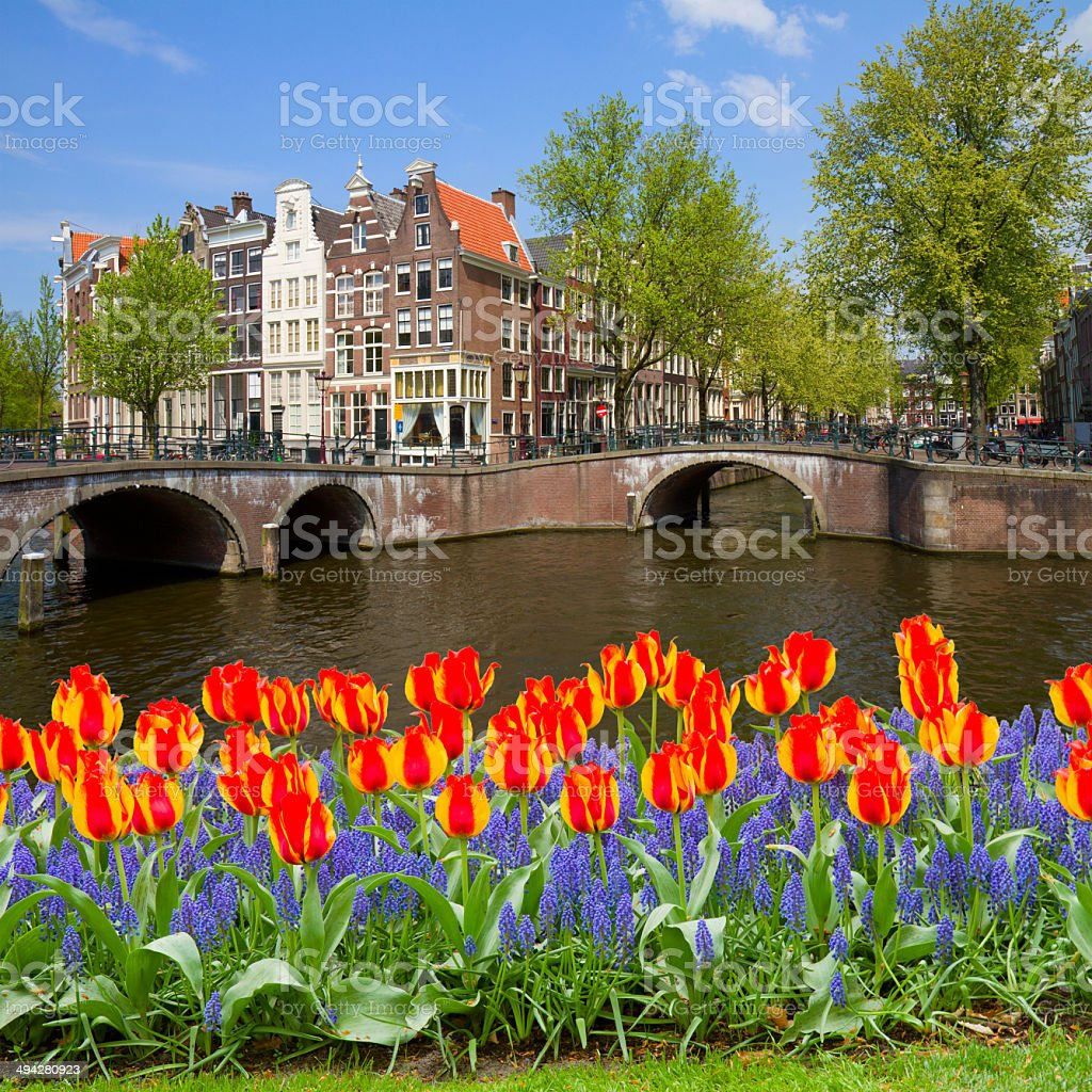 bridges of canal ring, old town, Amsterdam royalty-free stock photo