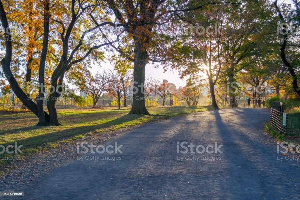 Bridle path in Central Park during the fall season stock photo