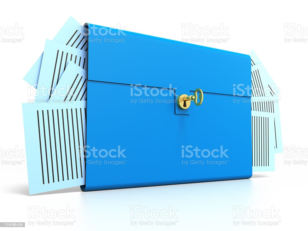 Brief Case with gold key stock photo