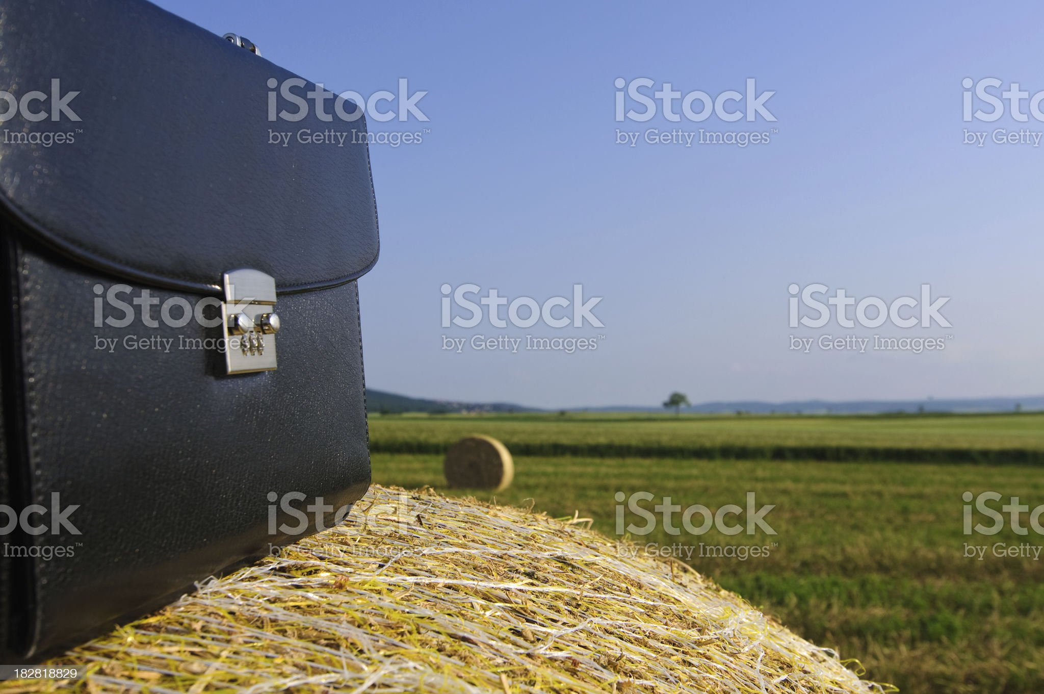 Briefcase on bale royalty-free stock photo