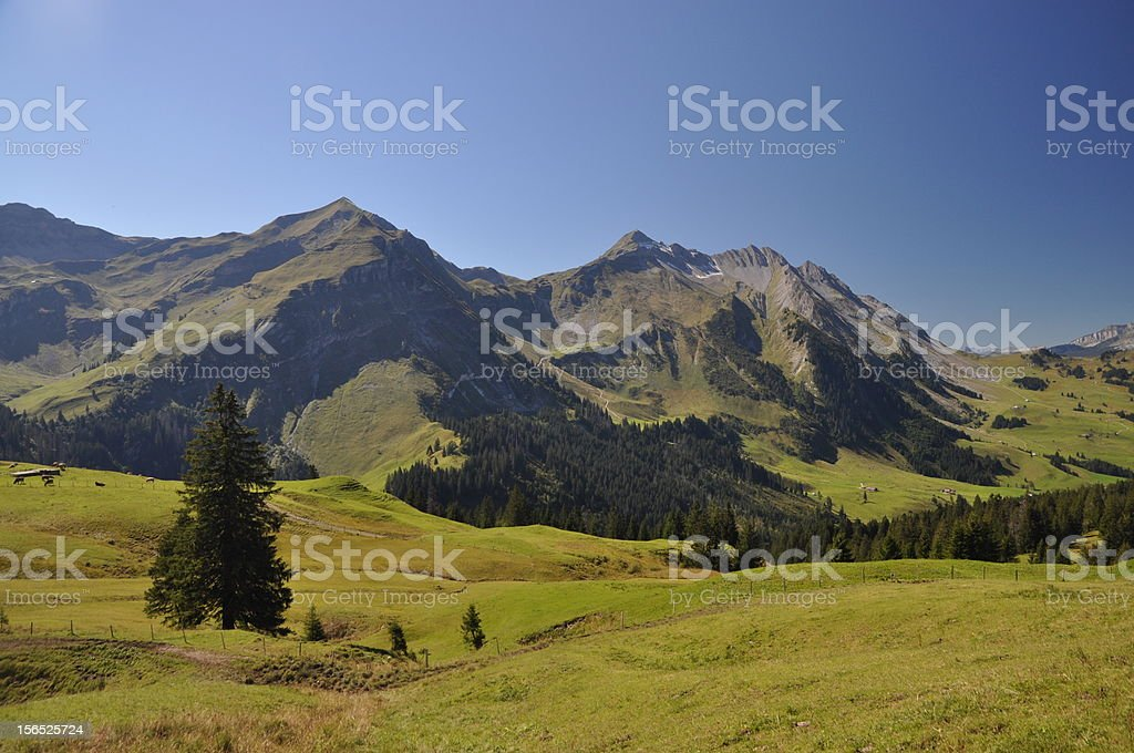 Brienzer Rothorn, a mountain in Switzerland royalty-free stock photo