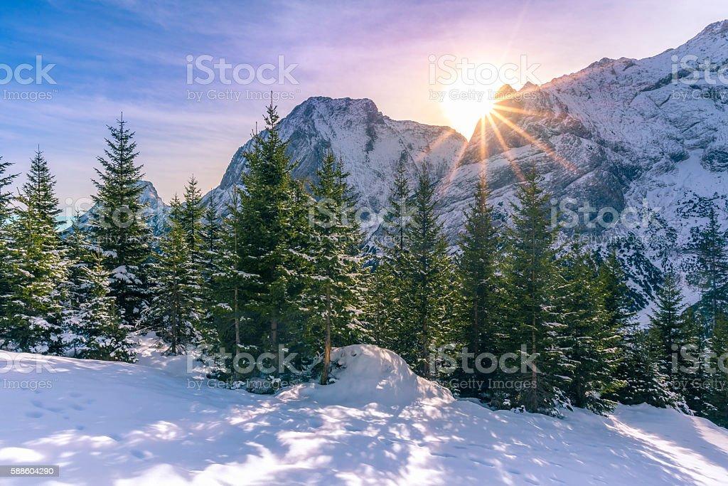 Bright alpine scenery in winter stock photo