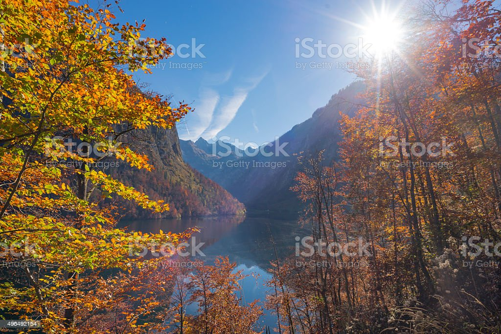 Bright autumn forests at lake Koenigssee in Berchtesgaden National Park stock photo