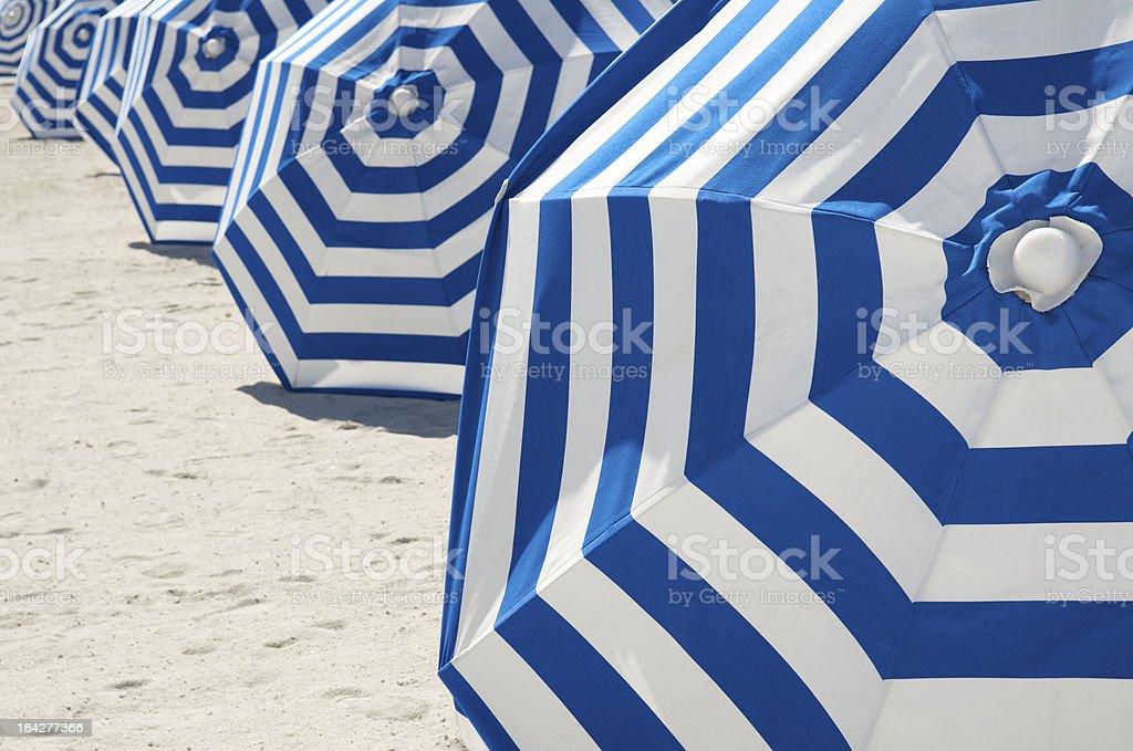 Bright Blue and White Striped Beach Umbrellas in a Row stock photo