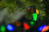 Bright Colored Christmas Tree Lights