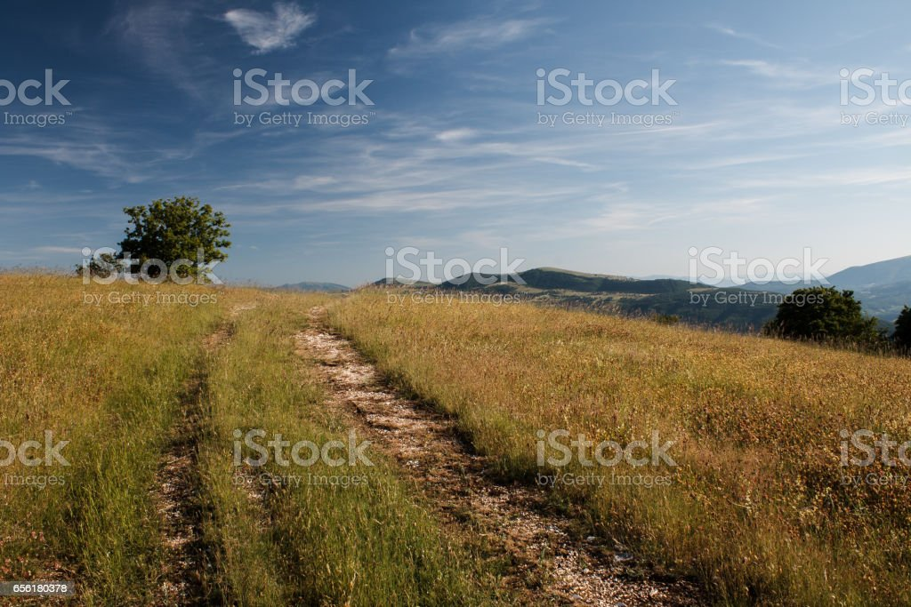 Bright day in the country stock photo