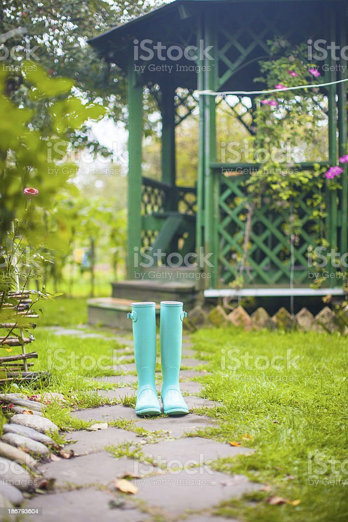 Bright fashionable rubber boots in garden royalty-free stock photo