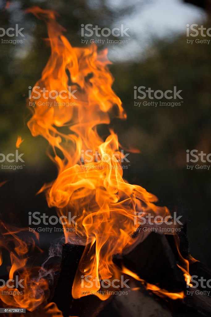 Bright flame of bonfire. Defocused stock photo