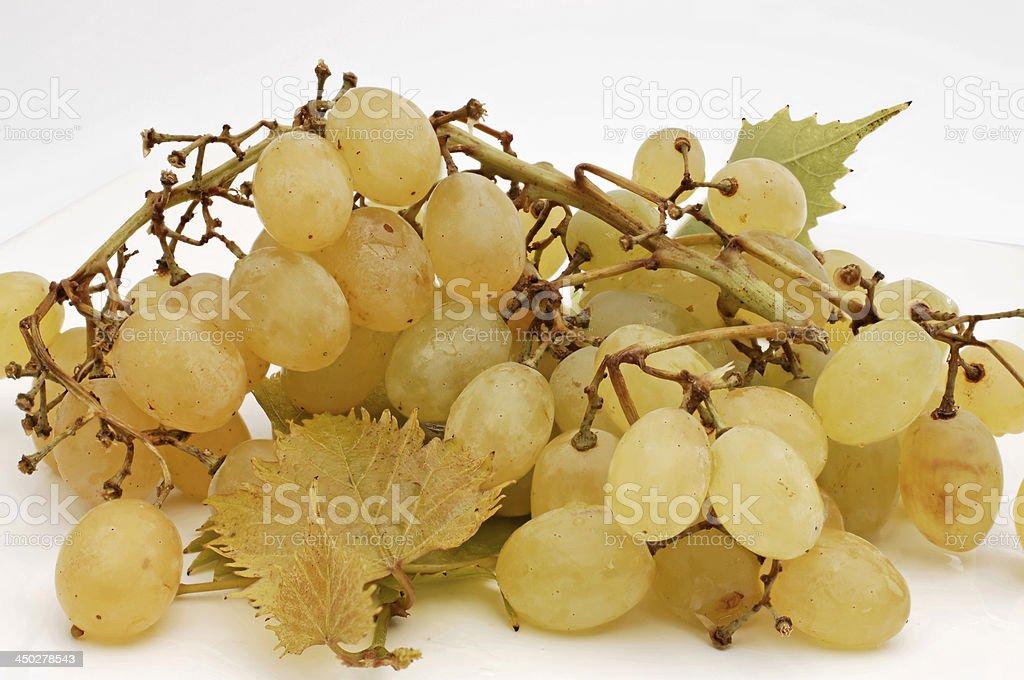 bright grapes royalty-free stock photo