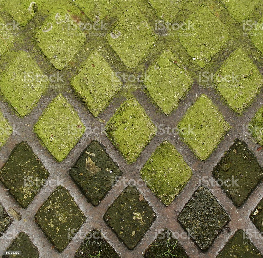 bright green moss growing in old worn rusty steel grid royalty-free stock photo