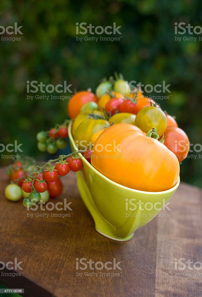 Bright Heirloom Tomatoes in the Garden stock photo