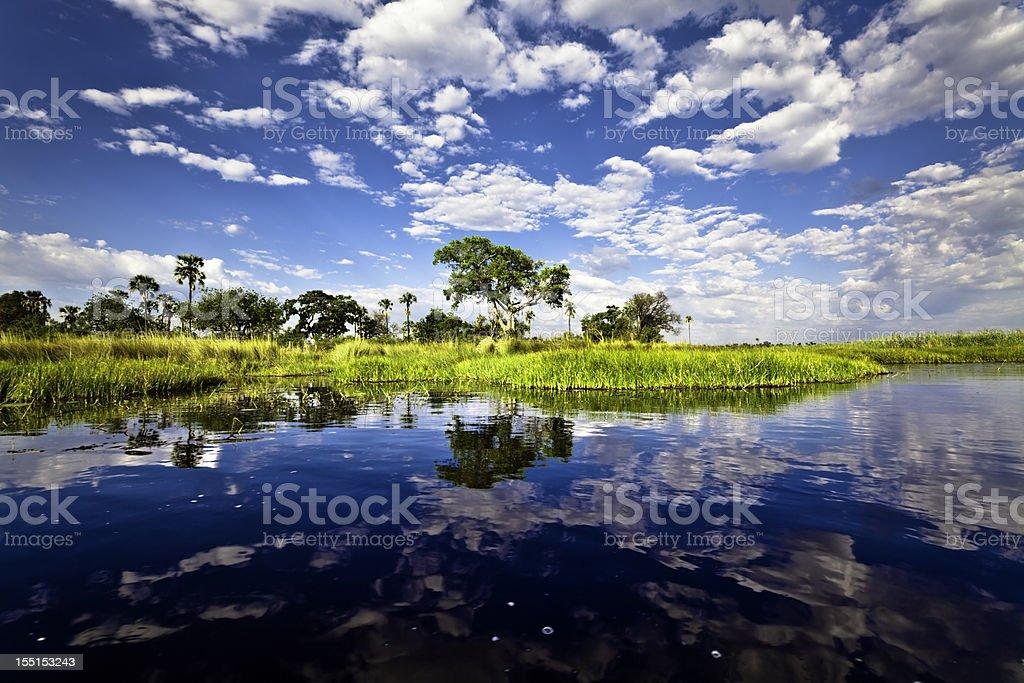 Bright landscape view of Okavango Delta, Botswana stock photo