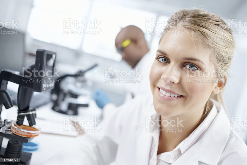 Bright minds at work royalty-free stock photo
