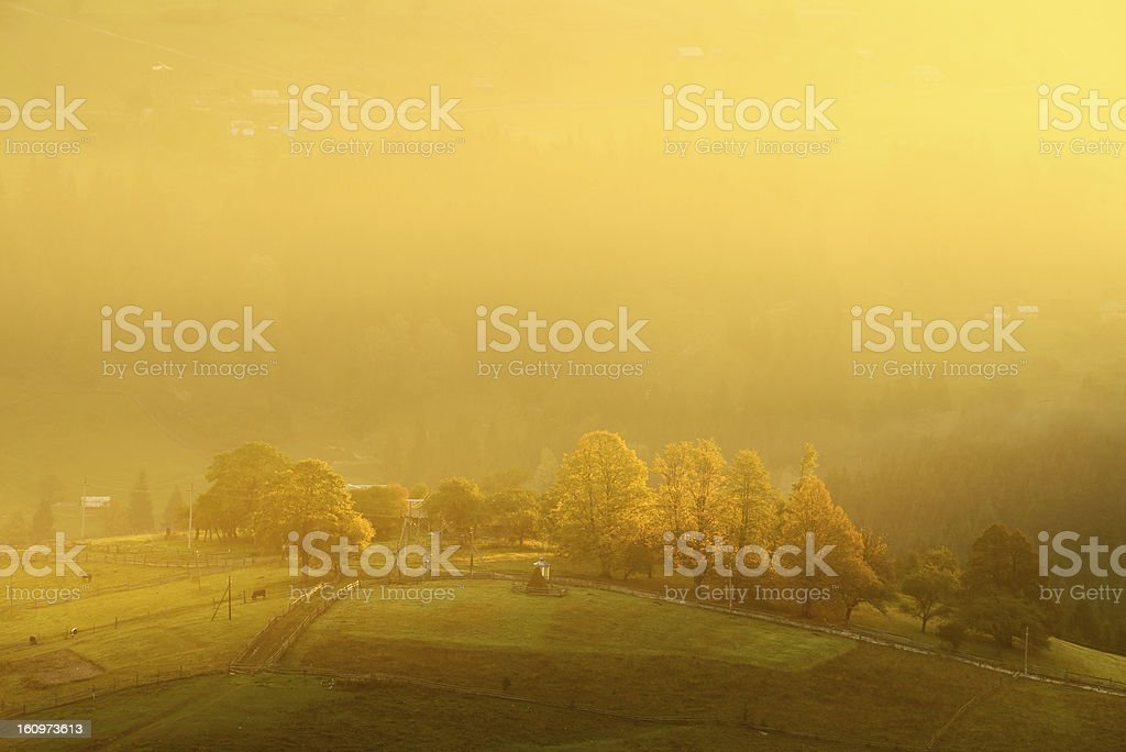 Bright morning landscape in Carpathian mountains royalty-free stock photo
