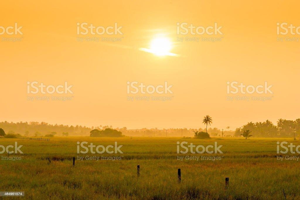bright orange sun at sunrise over a field stock photo