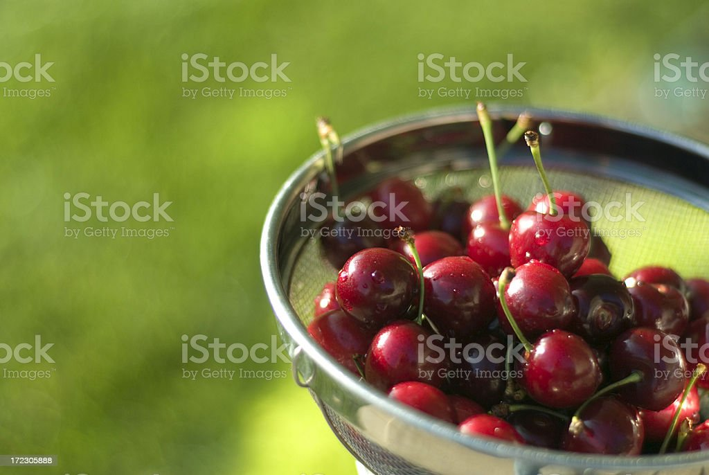 Bright Red Cherries! royalty-free stock photo