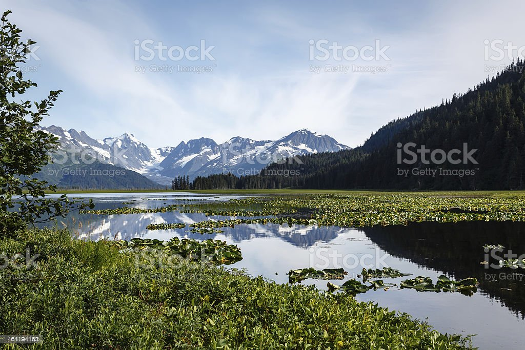Bright reflection of snow capped mountains in pond Alaskan wilderness stock photo
