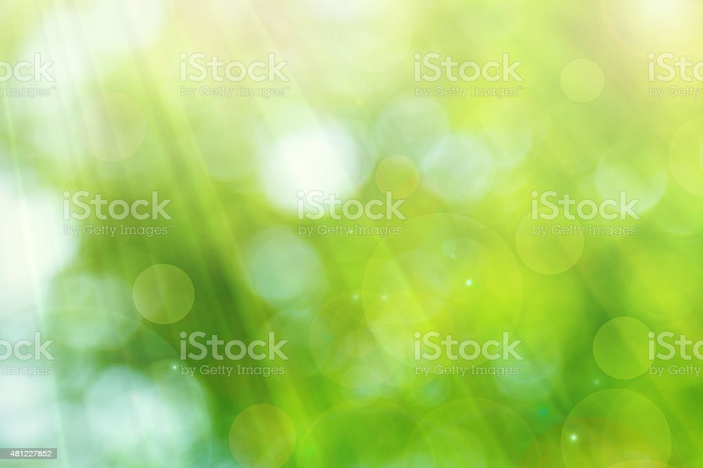 bright spring with sunlight bokeh background stock photo