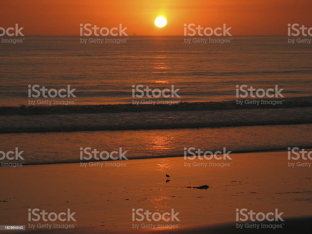 bright sunset royalty-free stock photo
