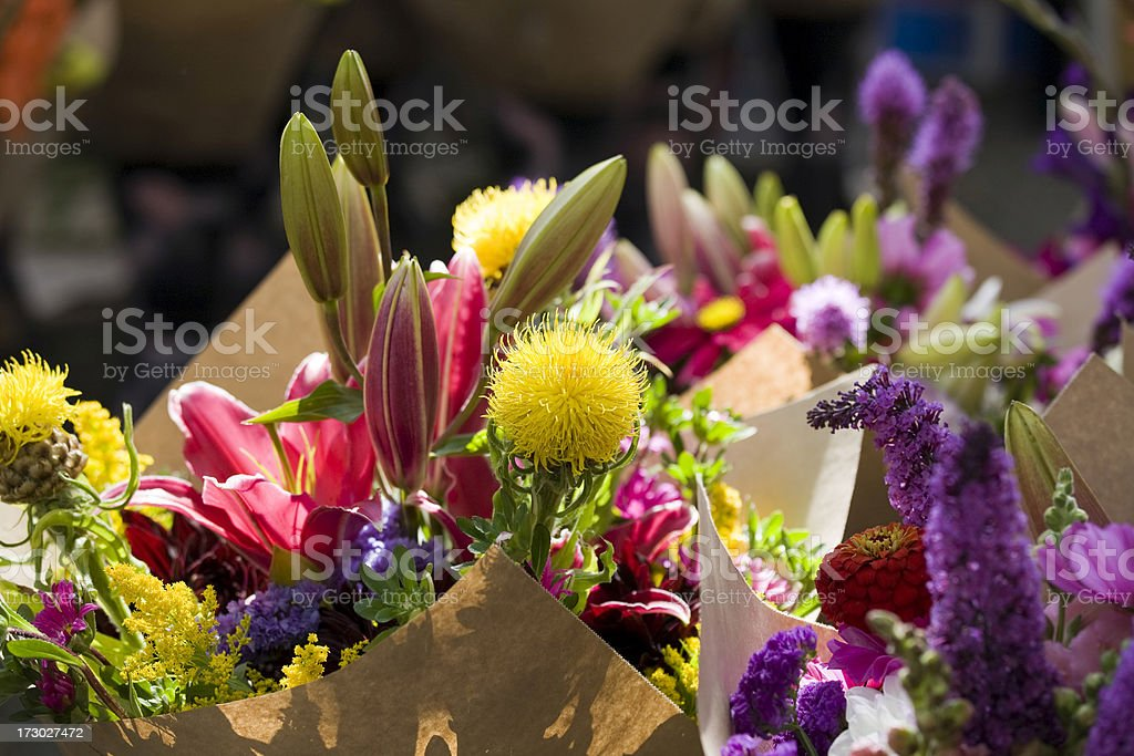 Bright sunshine on fresh flowers at farmers street market royalty-free stock photo