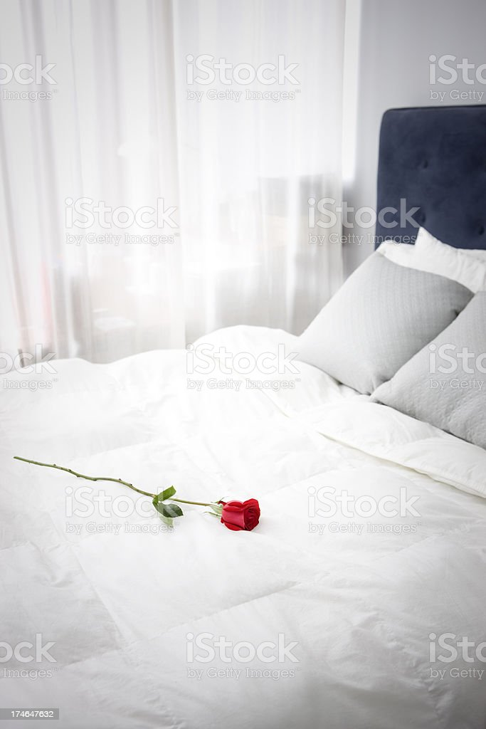 Bright White Bedroom with Single Rose on Bed, Copy Space royalty-free stock photo